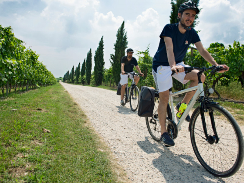 FROM VERONA TO VALPOLICELLA BY BICYCLE
