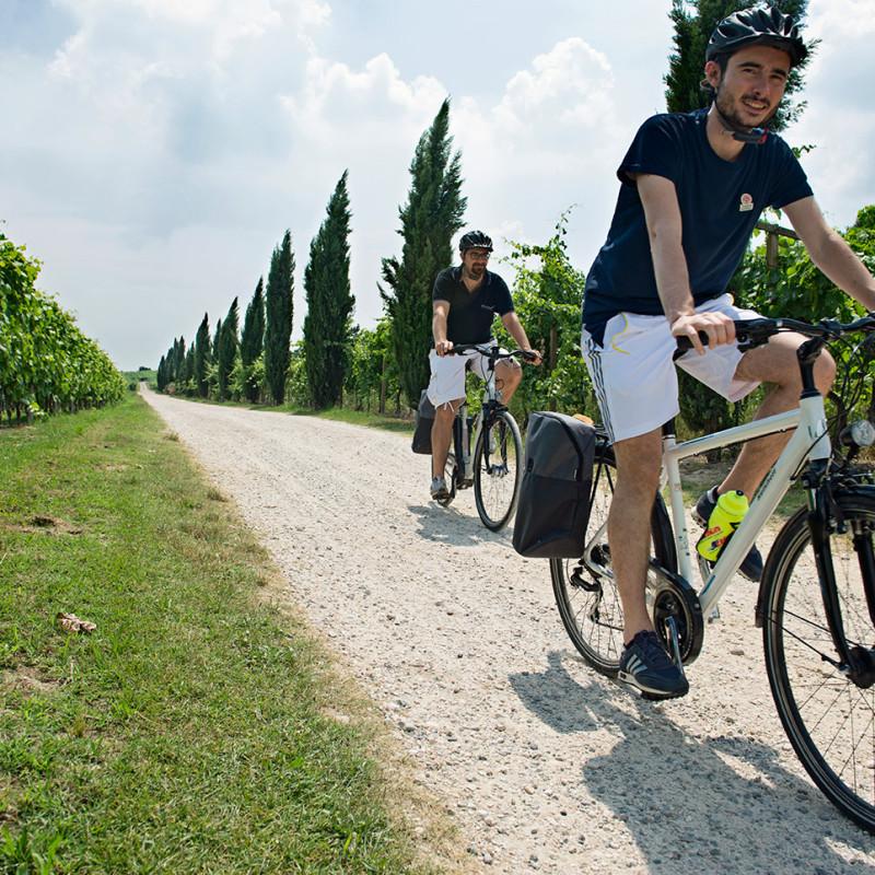 Da verona alla valpolicella in bicicletta!